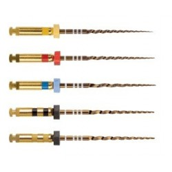 Protaper gold  31 mm